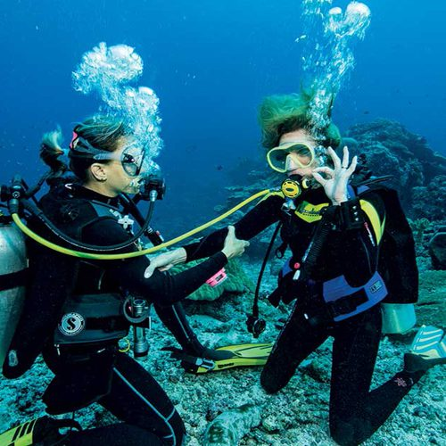 PADI Rescue course cairns