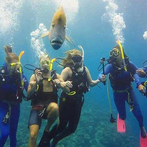 Intro diving cairns