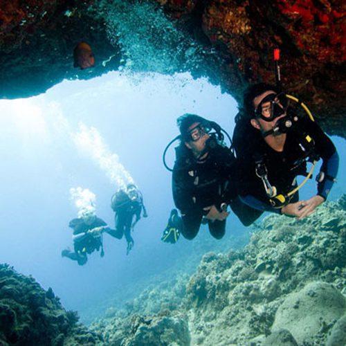 Kangaroo Explorer Cairns Dive Scuba Snorkel