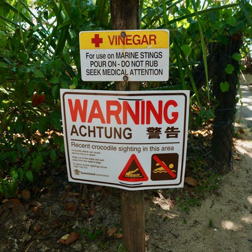 Cairns Jellyfish stinger sign